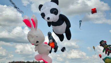 Дракон, панда и осел: на Николаевском фестивале в небо взмыли сотни удивительных змеев | Корабелов.ИНФО