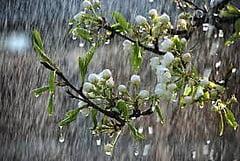 На Николаевщине в ближайшие сутки ожидается ухудшение погоды: дождь и гроза | Корабелов.ИНФО
