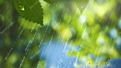 Photo of Кратковременные дожди, грозы и до +25º: субботняя погода в Николаеве