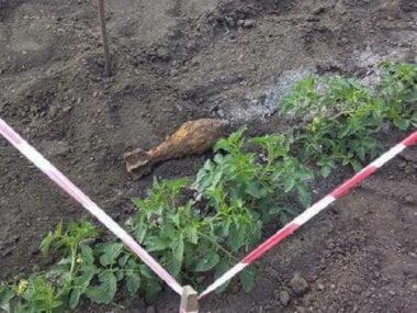 Пиротехники уничтожили минометную мину, найденную на поле возле села Галицыново