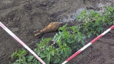 Пиротехники уничтожили минометную мину, найденную на поле возле села Галицыново | Корабелов.ИНФО
