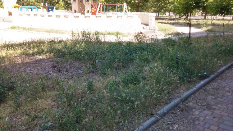 """Многострадальная """"Сказка"""" в Корабельном районе: заросла травой, в стене 2 года зияет дыра, тротуары - в мусоре"""
