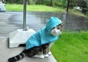 В Николаеве ожидается резкое ухудшение погоды
