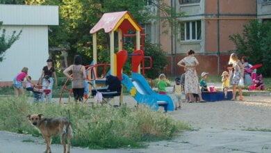Прямо на детской площадке в Николаеве мужчина показывал детям свои гениталии | Корабелов.ИНФО image 1