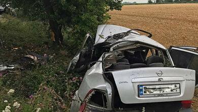 На Николаевщине «Opel Vectra» въехал в дерево – двое пассажиров погибли | Корабелов.ИНФО