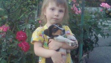 Трехлетней Софие Мочаловой нужна кровь: родственники просят помочь малышке | Корабелов.ИНФО image 1