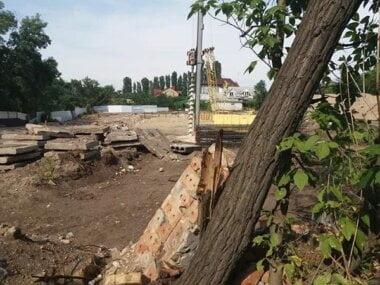 «Это так по-николаевски», – депутат обвинила зоозащитницу в вырубке деревьев и застройке, перекрывающей выход к пляжу
