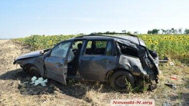Пятеро индусов в «Форде» разбились в Витовском районе   Корабелов.ИНФО image 2