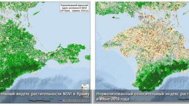В оккупированном Крыму показали масштабы исчезновения растительности на полуострове | Корабелов.ИНФО