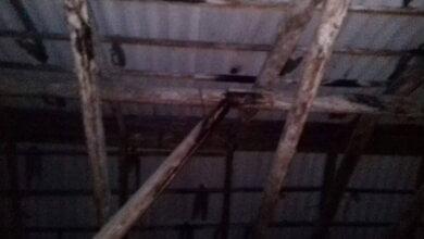 чердак протекающей крыши по пр. Богоявленскому, 330
