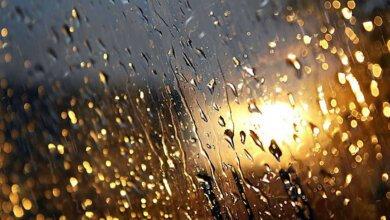 В Николаеве объявили штормовое предупреждение – ожидают грозу и шквальной ветер | Корабелов.ИНФО