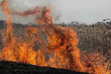 В Николаевской области установили пятый класс пожарной опасности