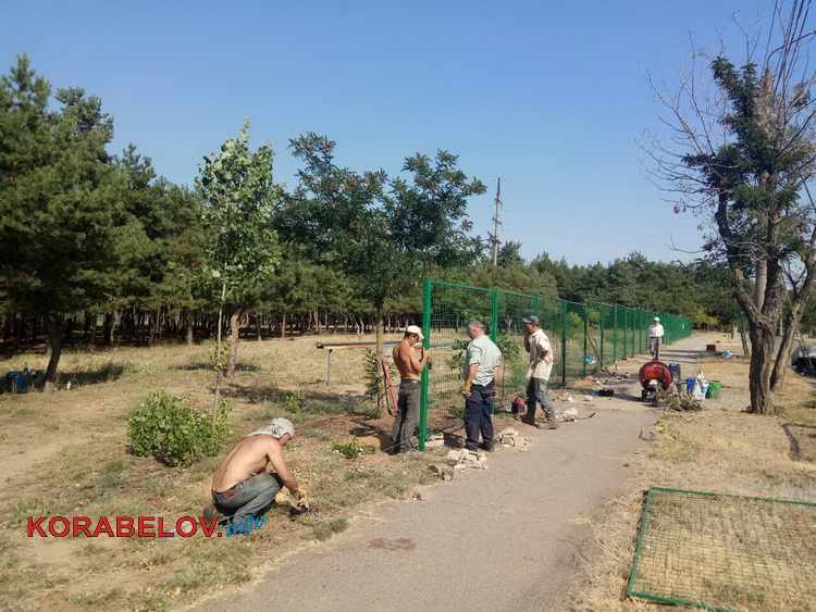 Photo of «За наши деньги отгородили от нас лес для собак», — возмущенные жители Корабельного района (Фото)
