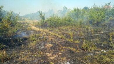 За добу на Миколаївщині виникло 8 пожеж на відкритих територіях. Сьогодні зберігається високий клас пожежної небезпеки! | Корабелов.ИНФО