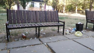 Кучи мусора встречают жителей Корабельного района в парке у семейных амбулаторий | Корабелов.ИНФО image 1