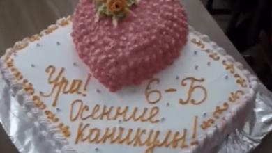 Торт розбрату: у школі дитині не дали солодощів, бо її мама не здала гроші (ВІДЕО)   Корабелов.ИНФО image 1