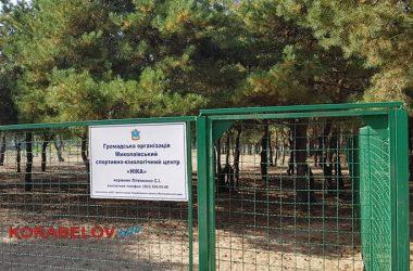 площадка для кинологов по ул. Новостройной