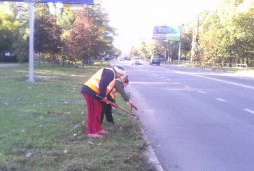 очищення бордюрів від трави