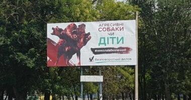 «Есть свой нелегальный рынок», - николаевские билборды решили нанести на электронную карту