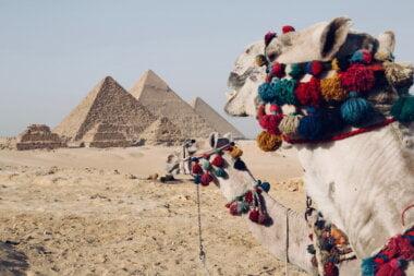 отдых в Египте незабываем