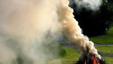 «Спалює один – страждають тисячі», - мешканців Корабельного району закликали повідомляти поліцію про спалювання листя | Корабелов.ИНФО