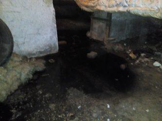 в подвале дома по ул. Океановской, 40-в