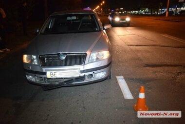 Смерть на поводке: в Николаеве собака затащила хозяина под машину