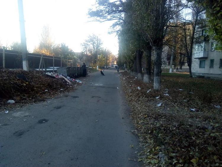кучи листьев в Корабельном районе