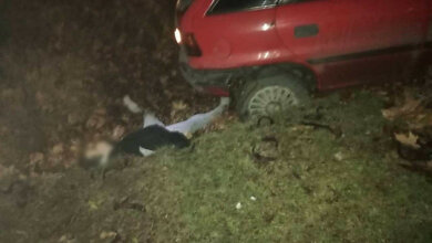 Ночью на Широкобальском перегоне Opel влетел в Nissan и насмерть сбил неизвестного парня. Фото 18+ | Корабелов.ИНФО image 3