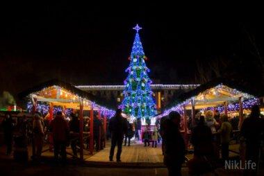 В Николаеве «зажгли» главную новогоднюю елку города