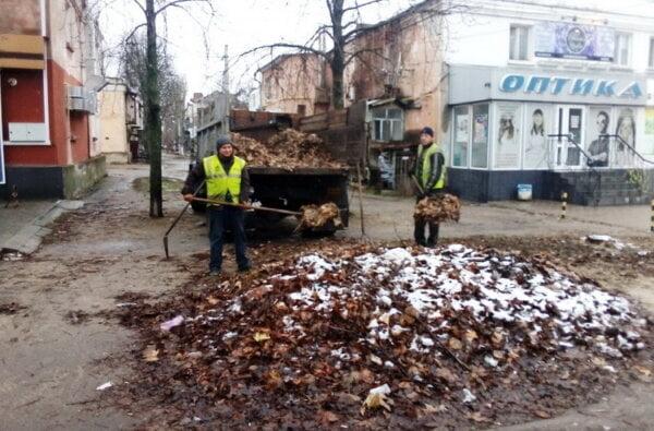 вывоз опавшей листвы