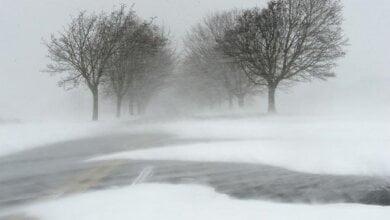 Усиление скорости ветра, снег... В Николаеве сегодня и в ближайшие дни - ухудшение погодных условий | Корабелов.ИНФО