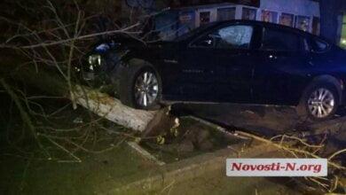 Ночью в Николаеве пьяный водитель на BMW въехал в дерево | Корабелов.ИНФО