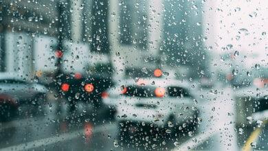 Синоптики обещают на Николаевщине дождь и мокрый снег, а мэрия - гололед | Корабелов.ИНФО