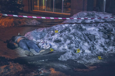 В Киеве собачник убил мужчину одним ударом (видео)