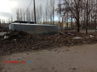 куча опавшей листвы и мусора в Корабельном районе