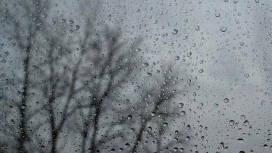 Дождь с мокрым снегом и порывы ветра: завтра в Николаеве ухудшится погода | Корабелов.ИНФО