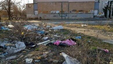 """""""Там бомжи и наркоманы... Почему администрация района бездействует?"""", - жительница Корабельного о мусорной свалке   Корабелов.ИНФО image 6"""