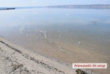 В Николаеве в реку вновь сбрасывают канализационные стоки (видео)