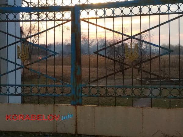 """Пожар в Корабельном районе: в парке """"Богоявленский"""" горел гектар камыша"""