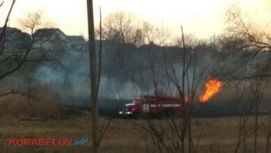 """пожар в парке """"Богоявленский"""""""