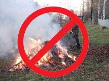 «Тягне за собою відповідальність», - мешканцям Корабельного району нагадали про заборону спалювання опалого листя