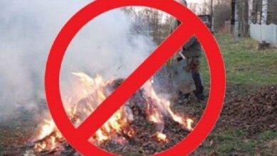 «Тягне за собою відповідальність», - мешканцям Корабельного району нагадали про заборону спалювання опалого листя | Корабелов.ИНФО