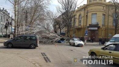 «Служебная халатность»: полиция открыла дело после вчерашнего падения тополя на машину в центре Николаева   Корабелов.ИНФО