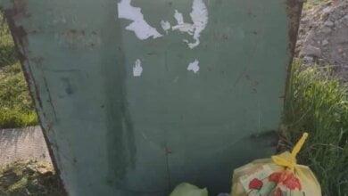 """Активисты обещают """"завалить"""" руководство Корабельного района мусором, если его не уберут с территории парка """"Богоявленский""""   Корабелов.ИНФО"""