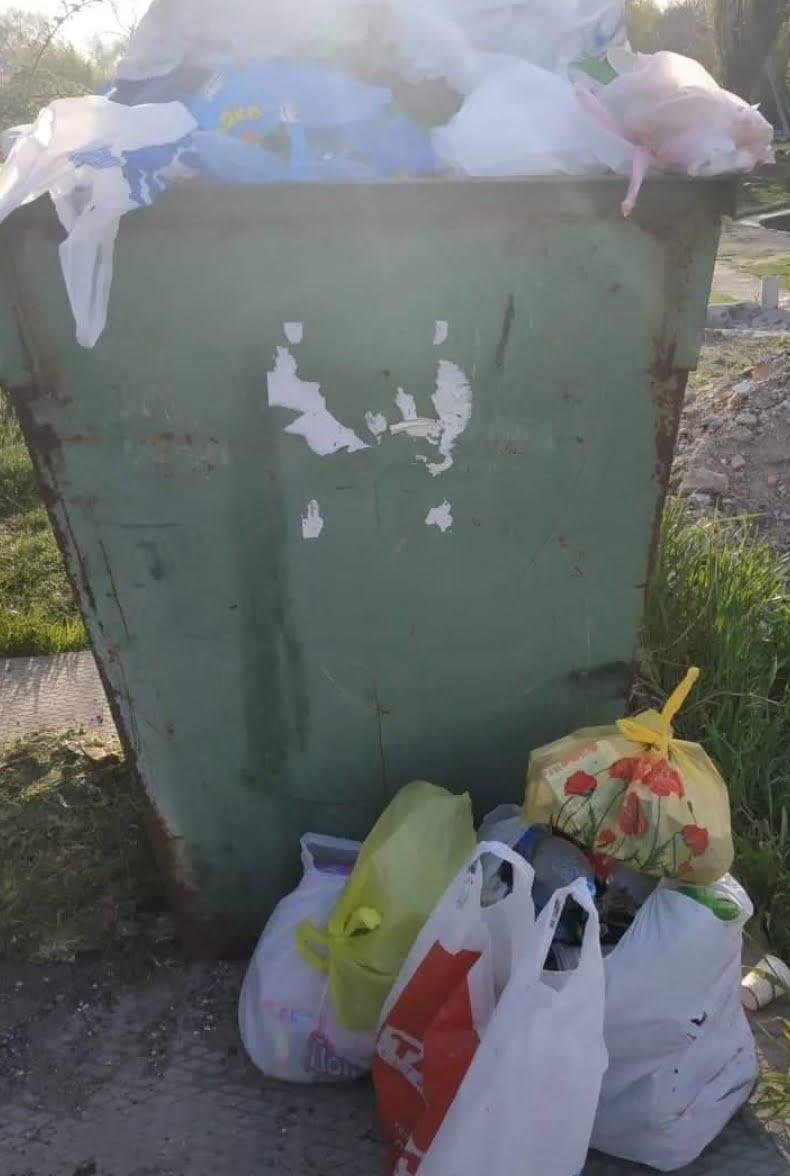 Photo of Активисты обещают «завалить» руководство Корабельного района мусором, если его не уберут с территории парка «Богоявленский»