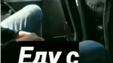 «Так делает только быдло»: в Николаеве показали пассажира маршрутки, бросающего шелуху от семечек в салон | Корабелов.ИНФО