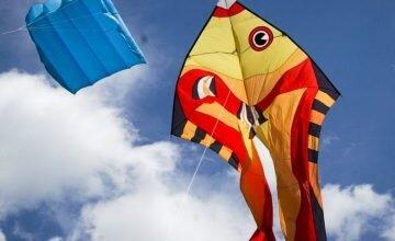 Большой пикник в Трихатах: под Николаевом проходит международный фест воздушных змеев   Корабелов.ИНФО