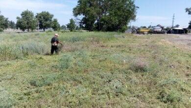 Photo of Косили траву, двічі прибиралися на зупинках… Про очищення Корабельного району з 3 по 7 червня