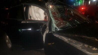 Photo of В Николаеве «Инфинити», уворачиваясь от столкновения со сворой собак, угодил в ДТП — пострадала женщина-пассажир